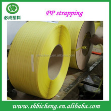 Printed PP strap/PP strapping /plastic packing strap