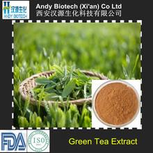 100% Pure Natural 90% Polyphenols 40% EGCG Green Tea Extract
