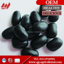 Types of High Quality Black Beans