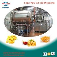 industrial Vacuum deep Fryer for chips