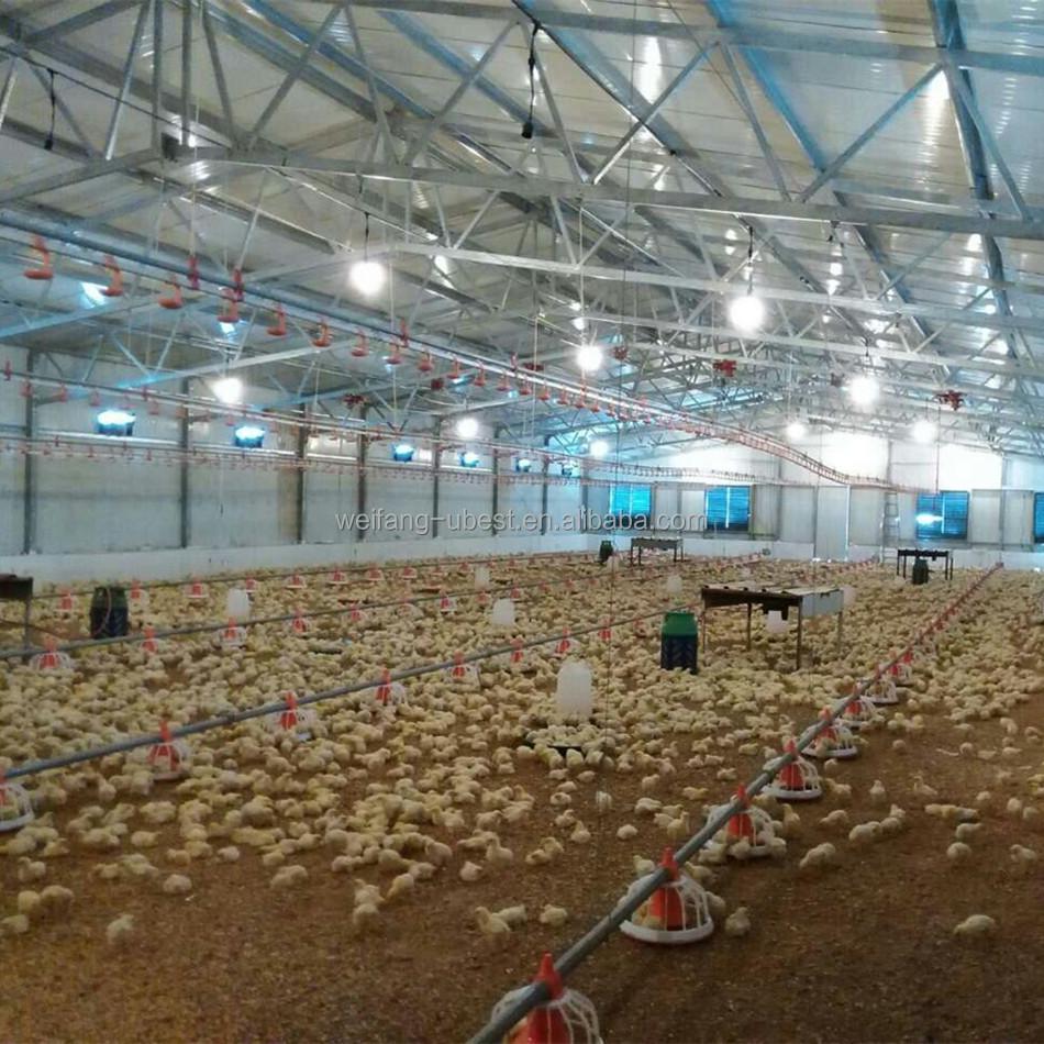 Poultry Farm Construction : House construction broiler