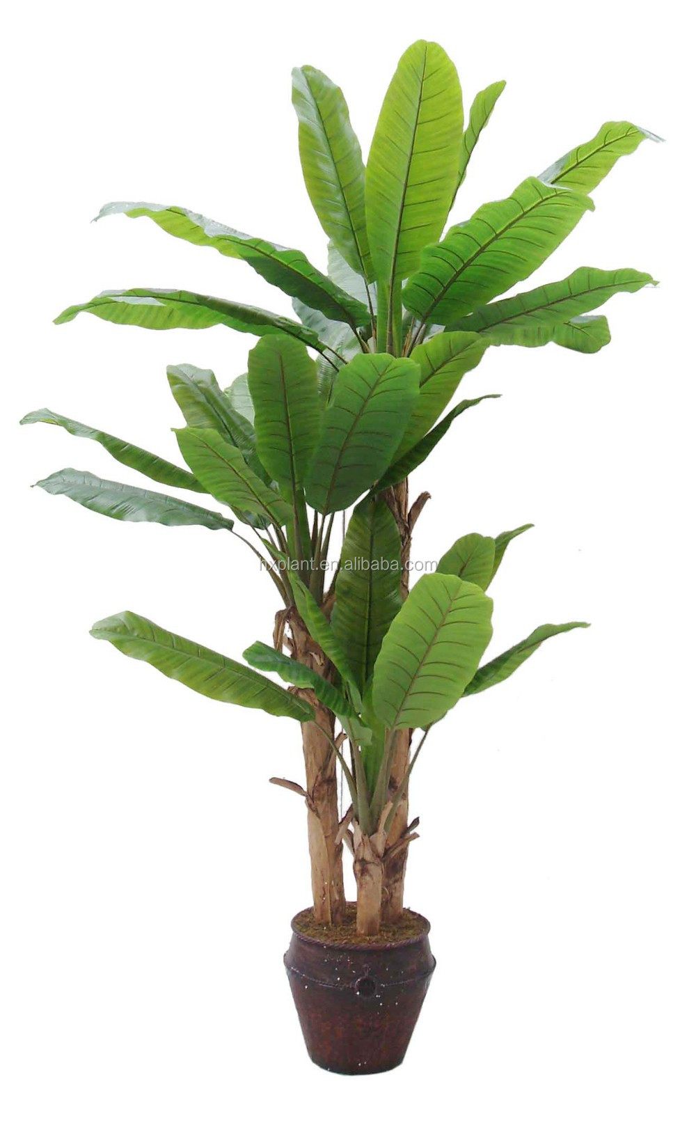 Vaso de planta artificial com a apple apple plantas em vasos de pl stico falso decora o vasos e - Comment planter un bananier ...