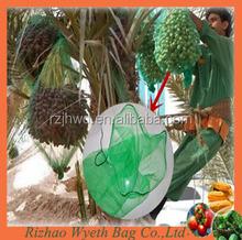 pe cheap date tube net green bags