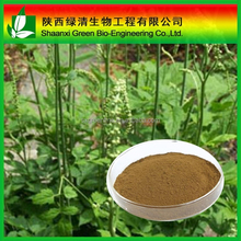 High Quality Triterpenoid Saponis,Triterpene Glycosides/triterpenoides Saponis/High Quality Gotu Kola Extract