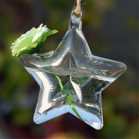 New 1pcs Modern simple design Clear Star Hanging Glass Flowers Plant Vase Hydroponic Container Pot Home Decor Convenient