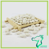 2014 Crop Spanish Type White Beans/White Kidney Beans Medium Type For Sale