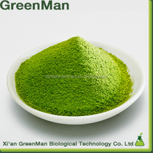 Top Quality Health Macha/Matcha green tea extract Best price 100% natural
