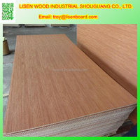 raw wood plywood for furniture making