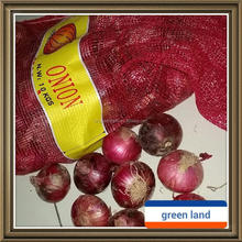 new crop fresh chinese red onion