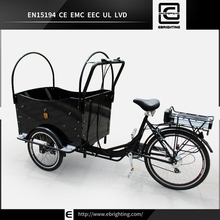 Professional women trike BRI-C01 electric motorcycle for sale