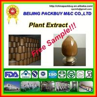Top Quality From 10 Years experience manufacture chicory root extract inulin