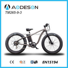 New style fat tire electric bike, electric bicycle, beach sport ebike with 36V lithium battery and 350W bafang motor