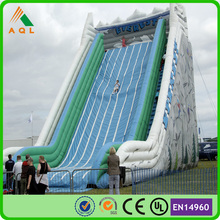 Inflatable giant slide for sale/ giant inflatable adult jump slide/ large outdoor slide