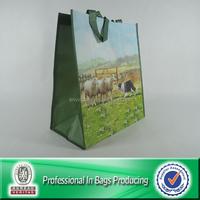 Custom Tote Bags No Minimum Promotional Non Woven Bag
