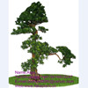 /product-gs/simulation-pine-tree-artificial-cedar-tree-artificial-pine-tree-60365941524.html