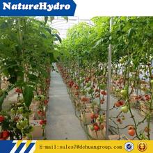 Riego por goteo equipo para el cultivo de interior sistema