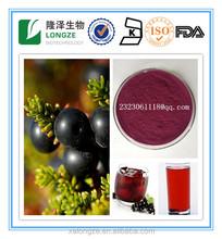 100% Natural Organic Herbal Black Currant juice powder Ribes nigrum Black Currant extract powder