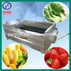 HOT SALES! QPQX-4000 fruit and vegetable cleaning machine