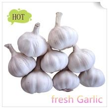 2015 new fresh garlic fron Chinese farm