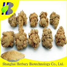 TOP Quality Radix/Panax Notoginseng Powder