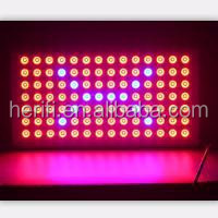 Greenhouse using high power panel 150w 200w 300w led grow light manufacturer