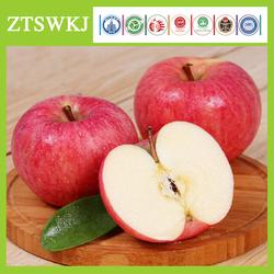 100% Organic Apple Fuji apple Fresh Apples
