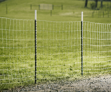 Long life and high quality field wire mesh fence