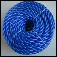 High quality colorful nylon twist rope for fishery