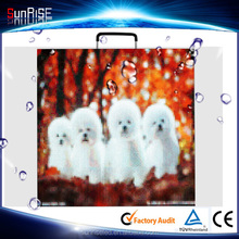 Sunrise Die casting aluminum indoor /Outdoor rental led display screen p5 p6 SMD,p10 dip, !! led display Rental Display Rent