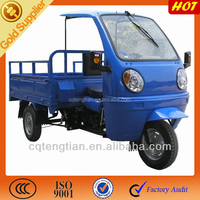Gasoline Motored Food Vending Carts Tricycle
