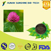 100% natural plant Extract powder/Red Clover Extract powder Isoflavone
