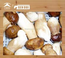 Замороженные боровик маракуйя сделано в китае