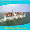 Reliable ocean freight to Busan/Inchon, South Korea, Southeast Asia from China--roger(Skype:colsales24)