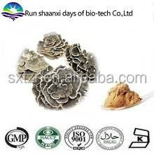 Free Sample Coriolus Versicolor Extract, Yunzhi Mushroom Extract