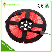 Hot sale Flexible Waterproof 5M 4.8W/M DC 12V 60 leds CE RoHS rohs light leds strip