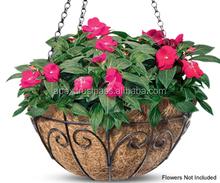 come piantare un cesto di fiori da appendere