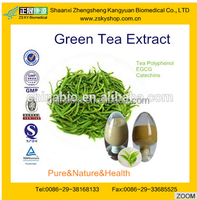 GMP manufacturer supply good quality Antioxidant Green Tea Polyphenols Catechine
