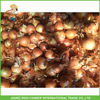 /product-gs/wholesale-chinese-onion-trading-company-red-onion-60368578089.html