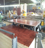 First-Class Grade and eucalyptus Main Material 25mm film marine plywood
