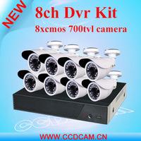 8CH DVR kit professional surveillance security system H.264 DVR and 8 Outdoor IR Cameras CCTV kit