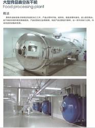 GOOD PERFORMANCE! newly designed energy saving fruit vegetable onion freeze drying machine
