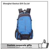 Alibaba China Hot New Products vertical backpack