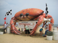 Advertising inflatable model,inflatable animal,inflatable crab