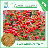 High Quality Hawthorn berry extract powder Hawthorn leaf extract 20% 40% Vitexin 2%