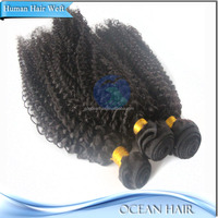Factory Price Wholesale High Quality 100% Virgin Malaysian Kinky Straight Hair Weave