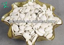 Snow white pumpkin seed / China Dalian Junsheng/ 2013 New Crop