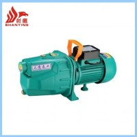 Flow Jet -100,Model Jet Water Pump