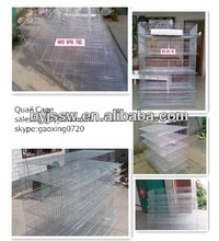 Quail Cage And Equipment