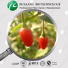 High quality 10:1 Wolfberry Powder/Goji Extract powder /Lycium barbarum L plant extract