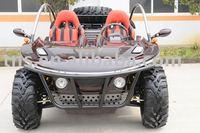 800cc EEC buggy/GO KART